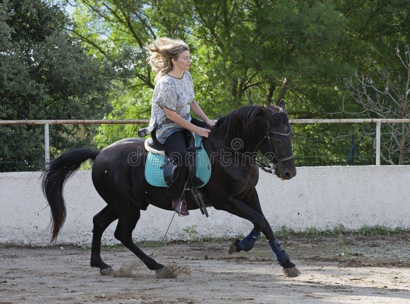 Cavaliere e cavallo della donna fotografia stock
