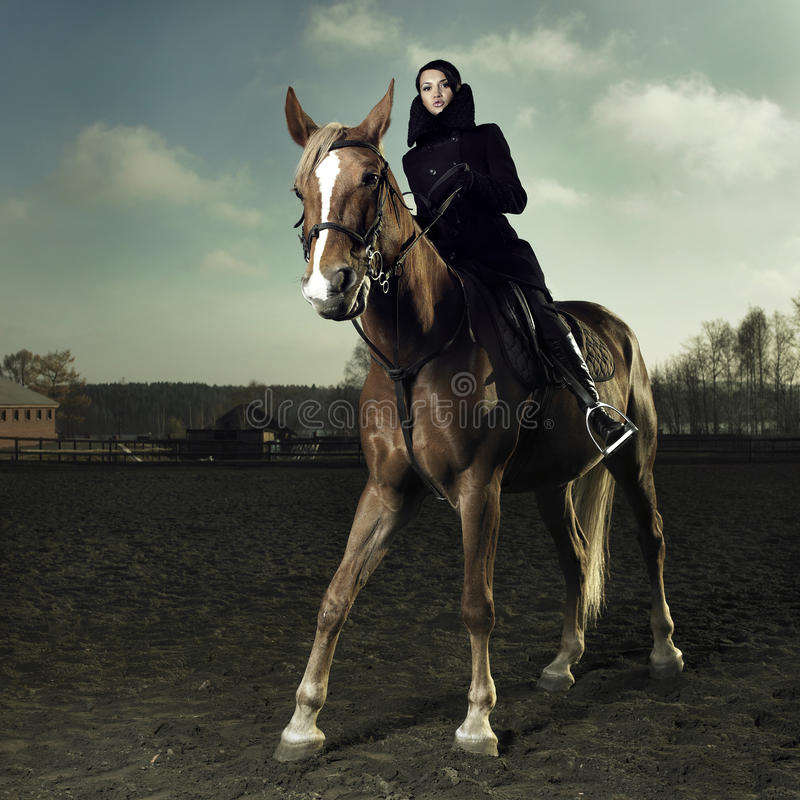 Cavaliere elegante immagini stock libere da diritti