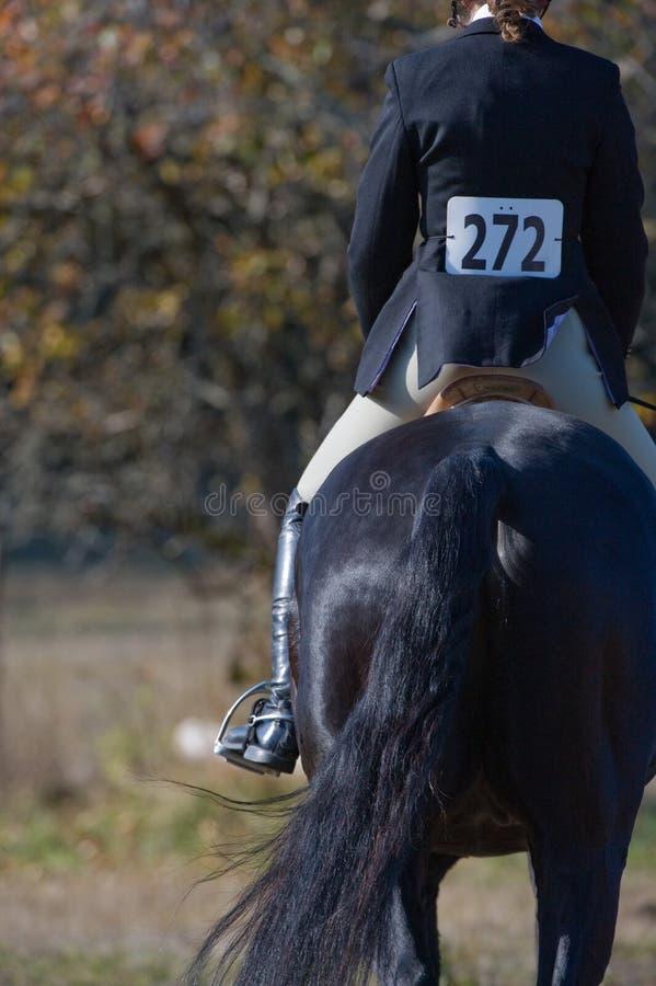cavaliere equestre di evento fotografia stock