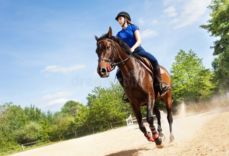 Cavaliere femminile su bello galoppo di funzionamento del cavallo fotografia stock libera da diritti