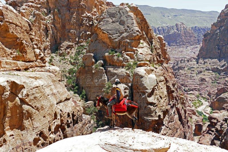Cavaliere zingaresco dell'asino su Cliff Edge nel PETRA, Giordania fotografie stock libere da diritti