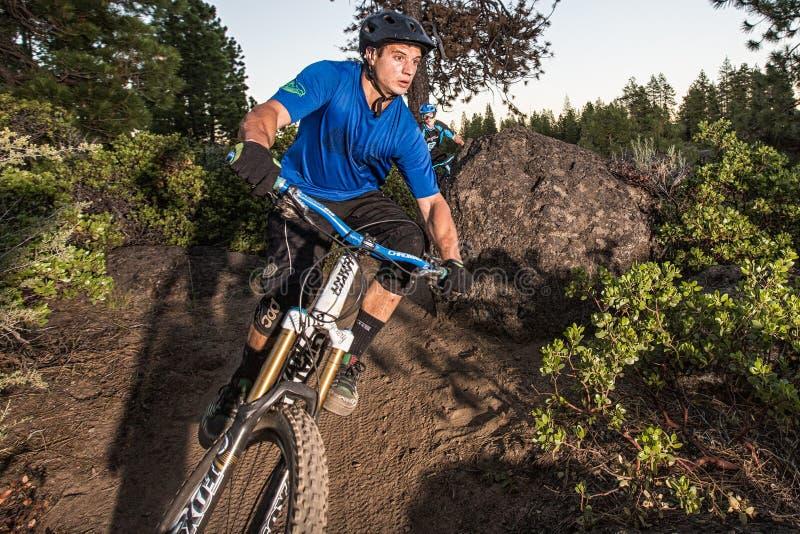 Cavalieri del mountain bike sulla traccia del fiume di Deschutes immagine stock