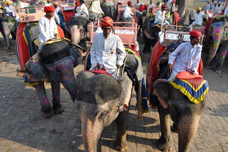Cavalieri dell'elefante nella fortificazione ambrata, India immagine stock