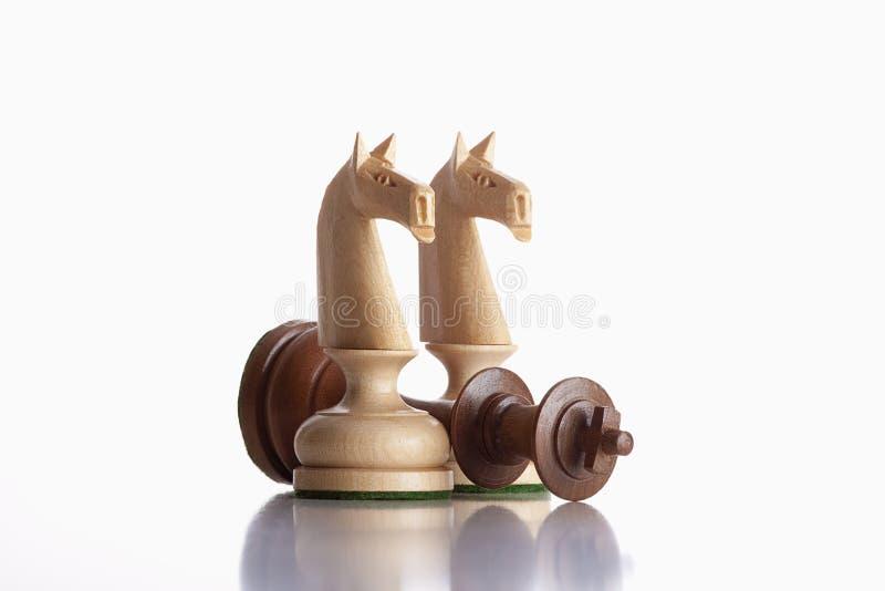 Cavalieri di scacchi fotografia stock libera da diritti