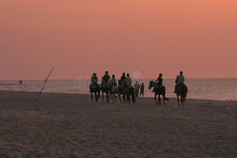 Cavalieri di tramonto immagine stock