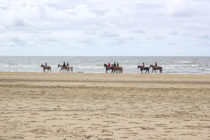 Cavalieri sui cavalli sulla spiaggia fotografie stock