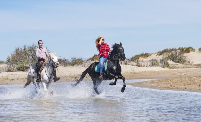 Cavalieri sulla spiaggia fotografia stock