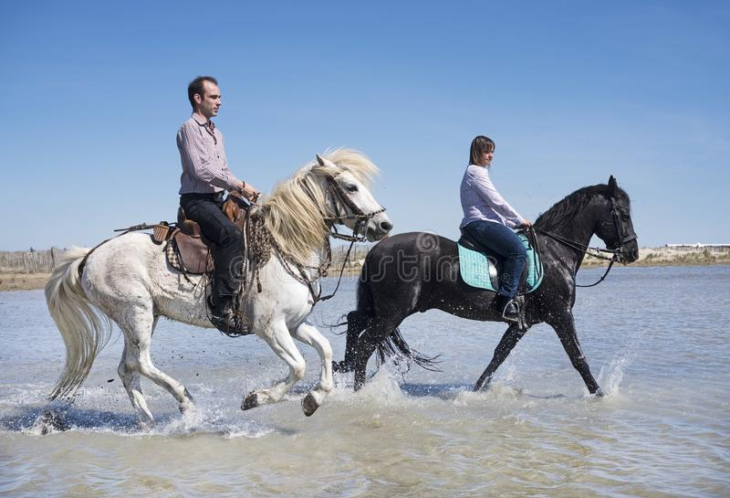 Cavalieri sulla spiaggia immagini stock