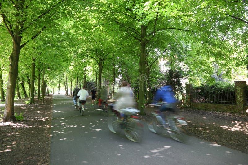 Cavaliers de bicyclette photo stock