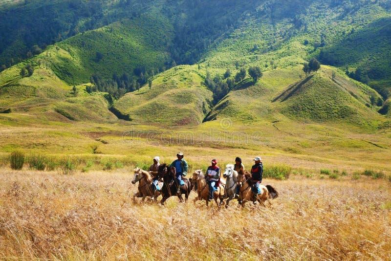 Cavaliers de cheval dans Savana image libre de droits