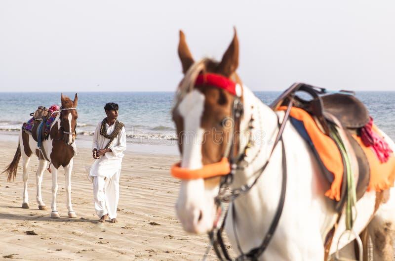 Cavaliers en plage de Karachi, Pakistan photographie stock