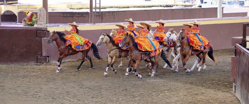Cavaliers féminins dans la robe orange avec des fleurs photo libre de droits