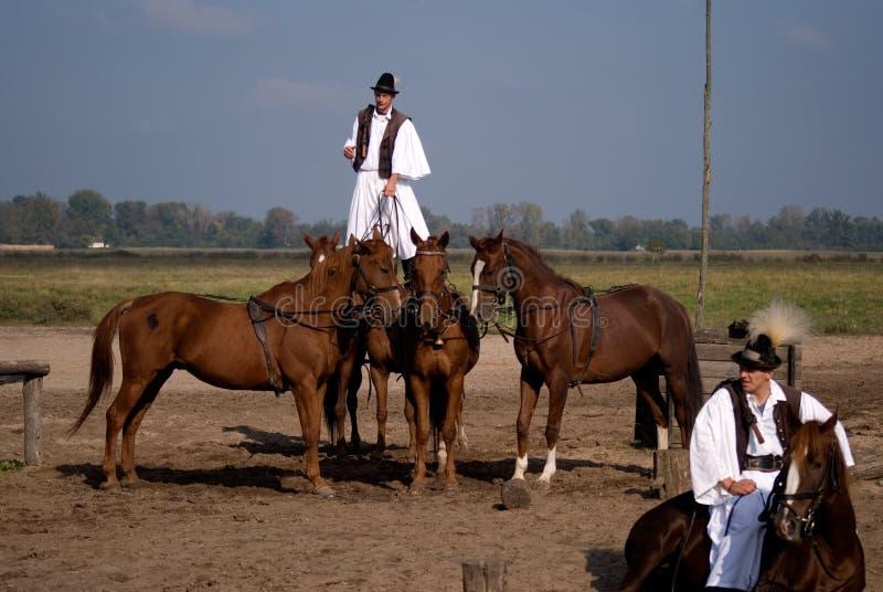 Cavallerizzi, Bugac, Ungheria fotografia stock libera da diritti