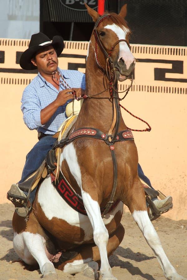 Cavallerizzo messicano di charros sul cavallo di seduta, TX, Stati Uniti fotografie stock