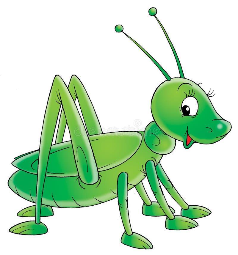 Cavalletta verde illustrazione vettoriale