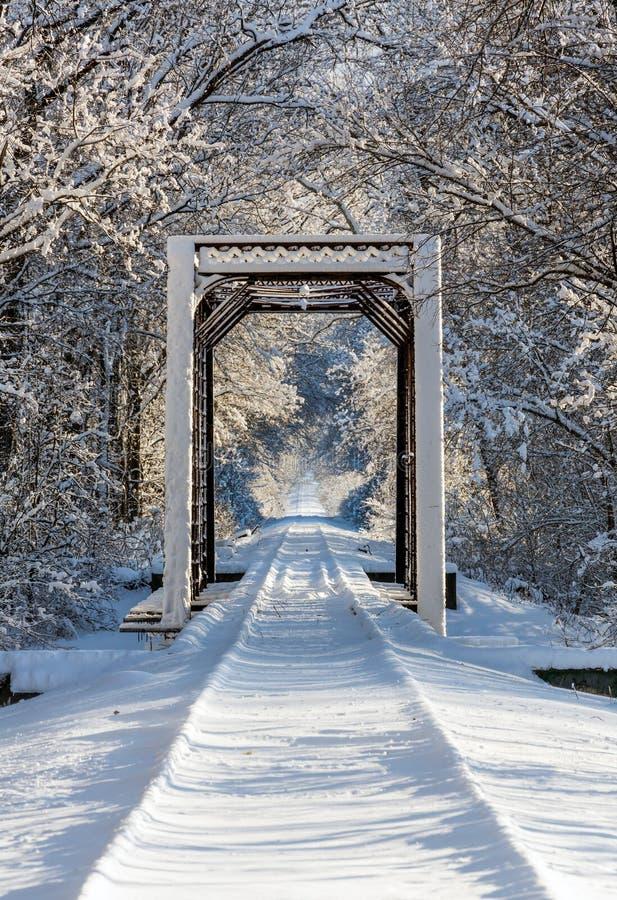 Cavalletto del treno di Snowy immagine stock