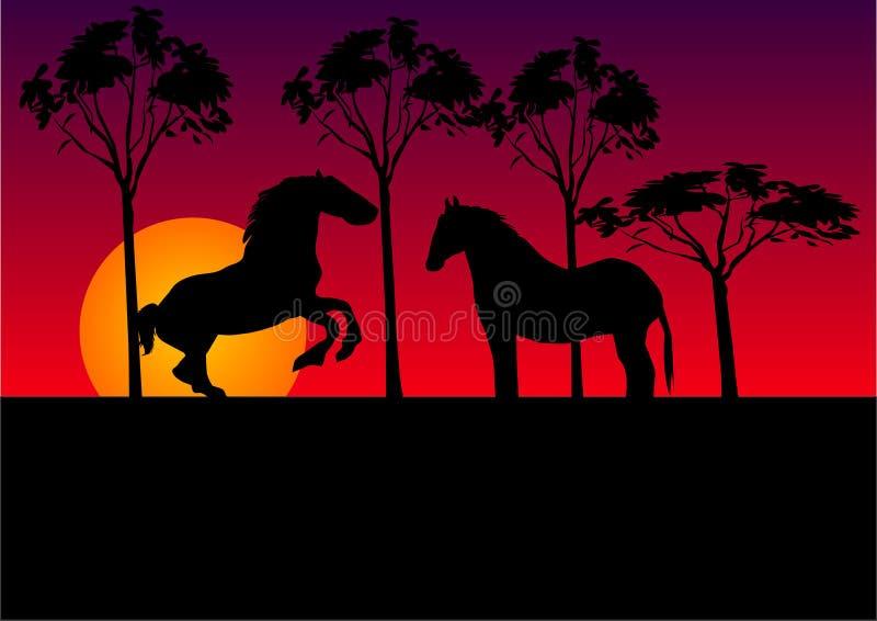 Download Cavalli illustrazione vettoriale. Illustrazione di equestrian - 3878458