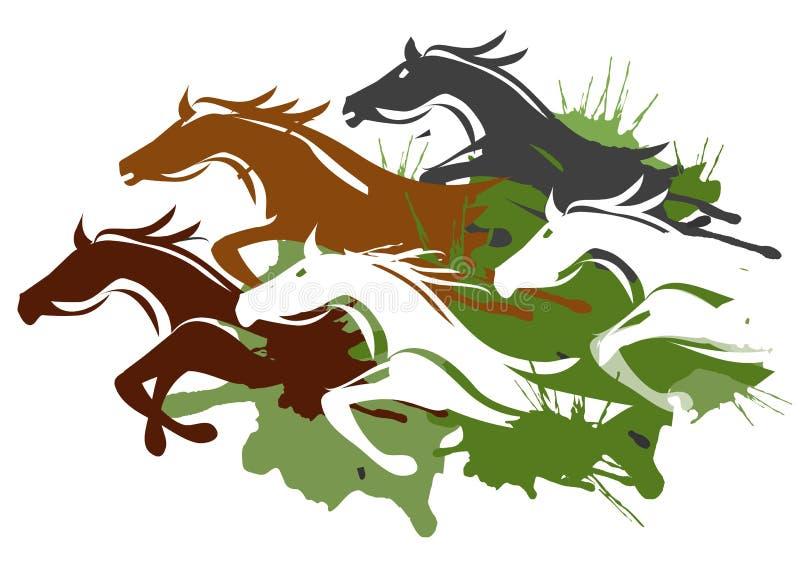 Cavalli correnti