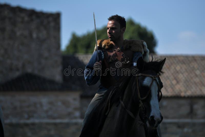 Cavalli da equitazione celtici del cavaliere in costume tradizionale immagine stock libera da diritti