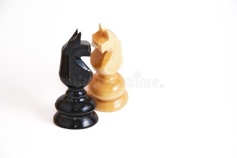 Cavalli di scacchi nell'amore fotografia stock