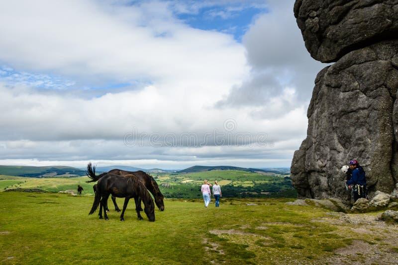 Cavalli e scalatori a Haytor Vale, Dartmoor fotografia stock libera da diritti