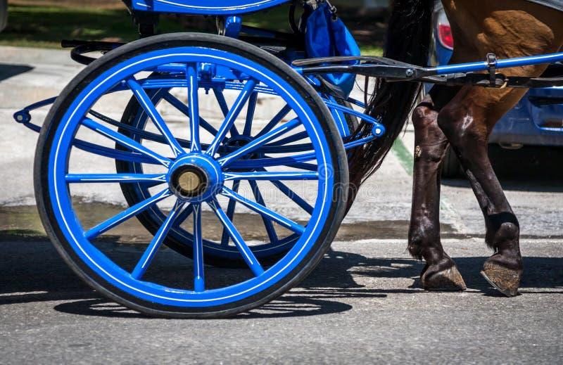 Cavalli tipici dello Spagnolo dell'automobile fotografie stock