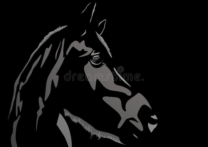 Cavallo illustrazione di stock