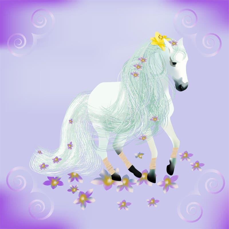 Cavallo bianco illustrazione vettoriale
