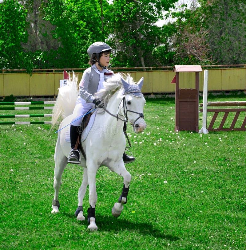 Cavallo bianco di guida del giovane ragazzo fotografie stock