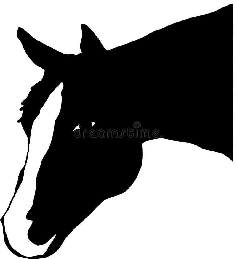 Cavallo capo illustrazione di stock