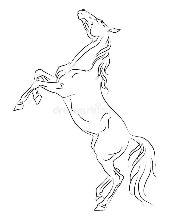 Cavallo che si eleva sull'abbozzo illustrazione vettoriale