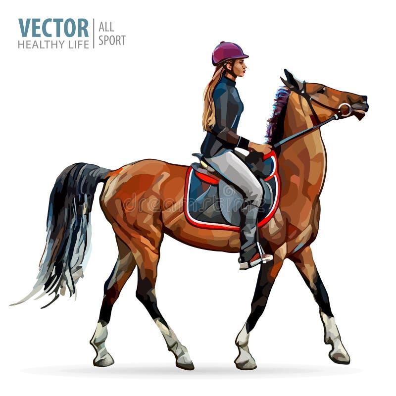 Cavallo con il cavaliere Puleggia tenditrice sul cavallo Corsa di cavalli Donna sul cavallo sport Illustrazione di vettore illustrazione vettoriale