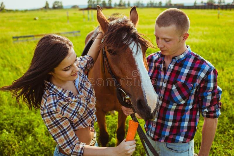 Cavallo d'alimentazione delle giovani coppie immagini stock libere da diritti