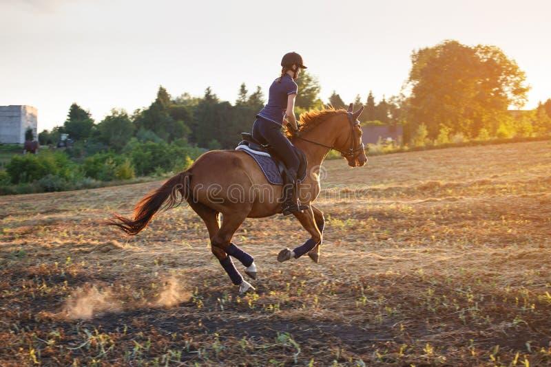 Cavallo da equitazione della ragazza al tramonto fotografia stock libera da diritti