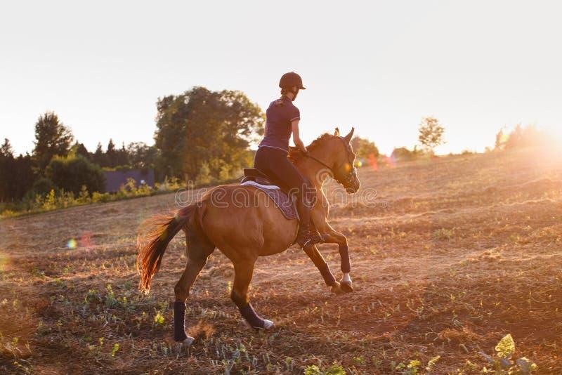 Cavallo da equitazione della ragazza al tramonto fotografie stock