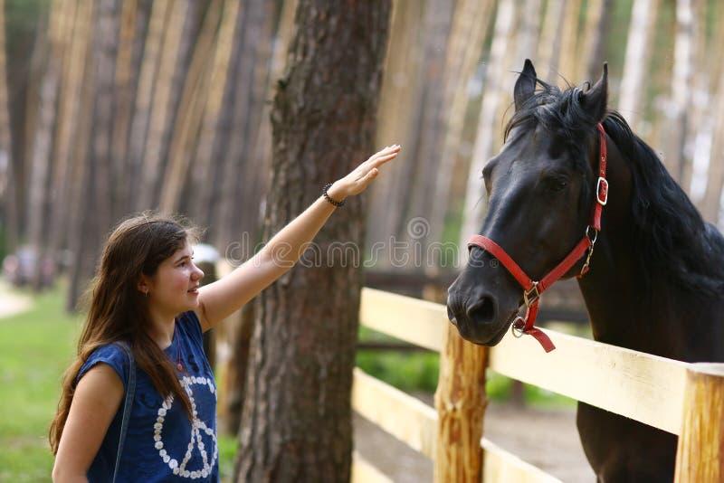 Cavallo del nero del colpo della ragazza dell'adolescente con la fine della capezza sulla foto di estate fotografia stock