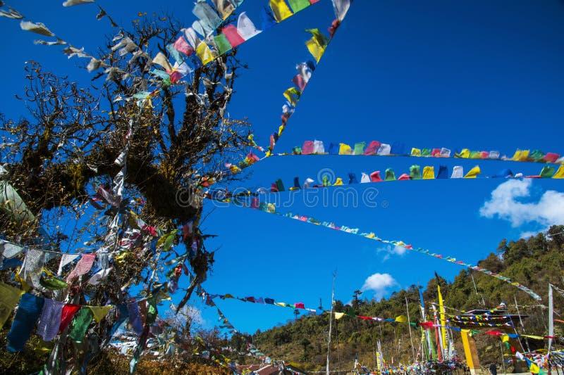 Cavallo del vento, Longta buddista Bhutanese, bandiere di preghiera, Bhutan fotografie stock libere da diritti