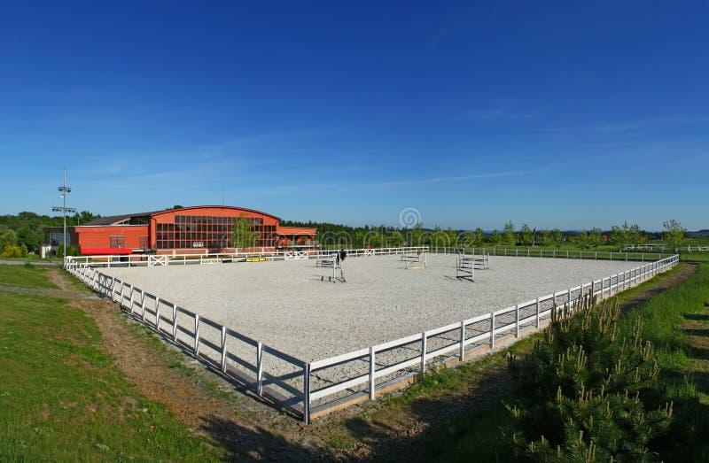 cavallo dell'accademia fotografia stock