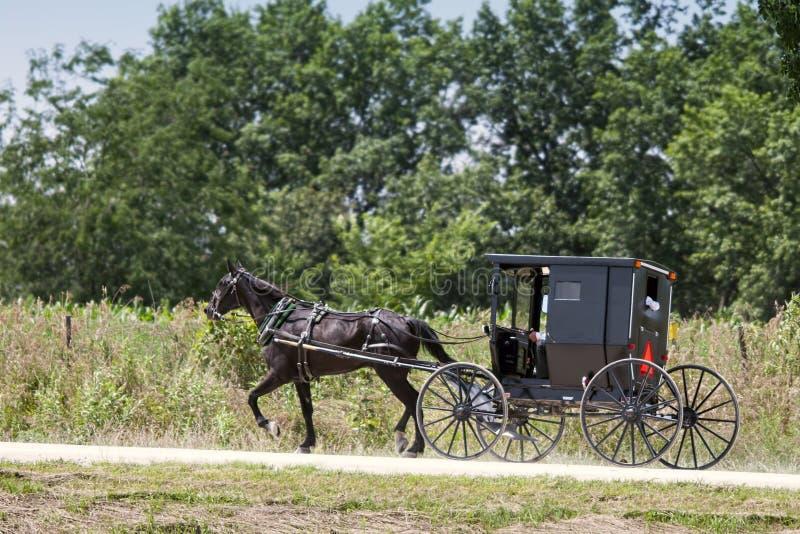 Cavallo di Amish e carrozzino nero immagini stock libere da diritti