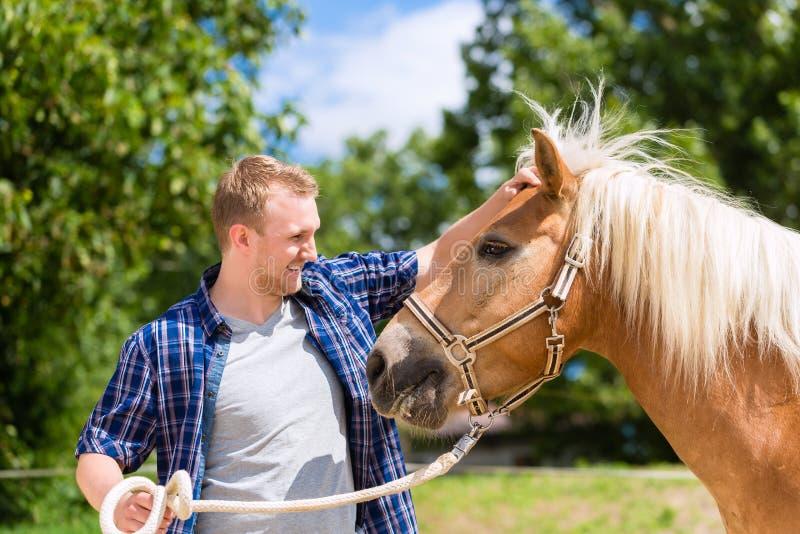 Cavallo di coccole dell'uomo sull'azienda agricola fotografie stock