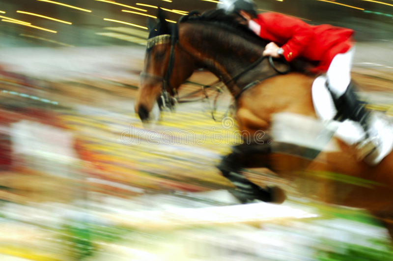 Cavallo di corsa immagini stock