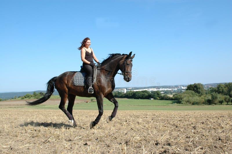 Download Cavallo Di Galoppo Del Equestrienne Immagine Stock - Immagine: 10661115