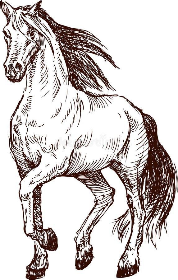 Cavallo di progresso