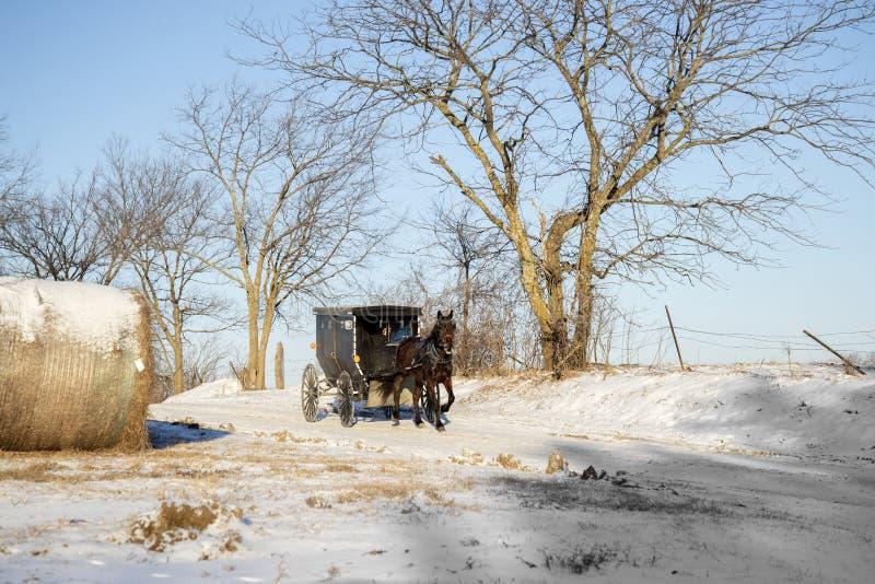 Cavallo e buggy dei Amish fotografie stock
