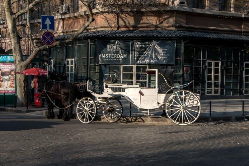 Cavallo e carrelli di Pegaso fotografie stock libere da diritti