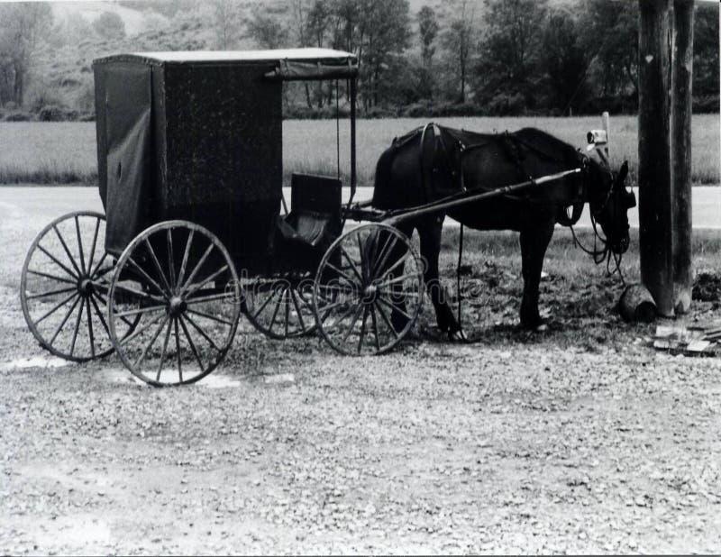 Cavallo e carrello rustici fotografie stock libere da diritti