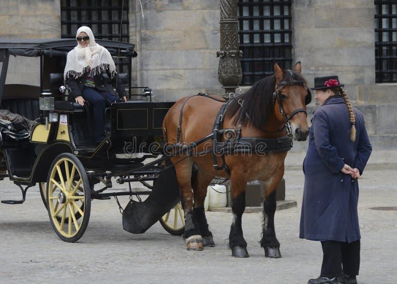 Cavallo e carrozzino a Amsterdam, Paesi Bassi fotografie stock