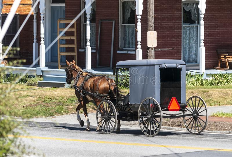 Cavallo e carrozzino di Amish su Sunny Summer Day 2 fotografie stock