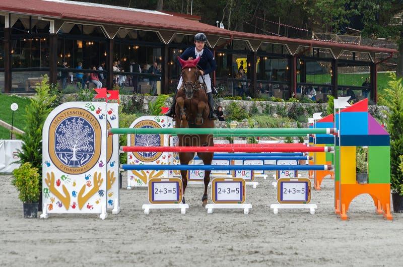 Cavallo e cavaliere alla manifestazione che salta sull'evento equestre fotografie stock