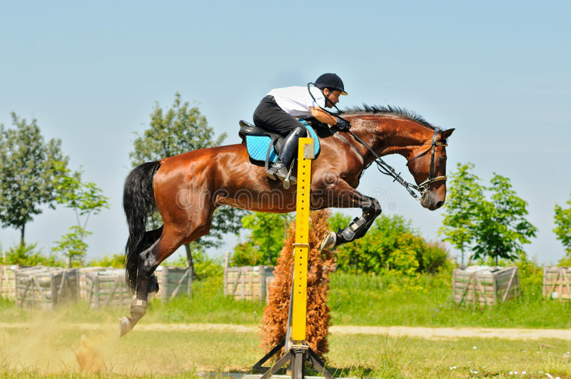 Cavallo e cavaliere di baia sopra un salto immagine stock